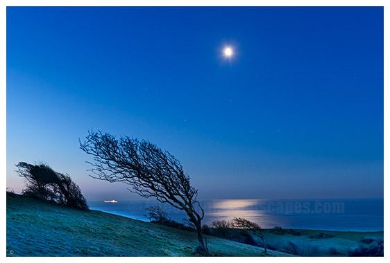Culver Down Moonrise