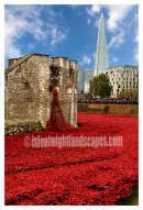 The Tower of London remembers
