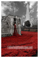 The Tower of London remembers.