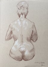 Sketch of a Woman With Her Hair Up From Behind.    Brown and white pencil