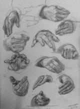 Hand Studies 3