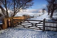 Gate at Felbrigg