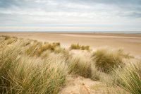 Dunes at Holkham