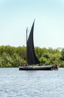 Norfolk Wherry 4
