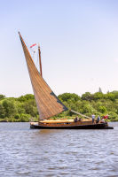 Norfolk Wherry 8