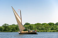 Norfolk Wherry 10