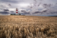 Happisburgh Lighthouse before harvest