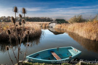 Blue boat at Hickling