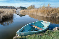 Blue Boat at Hickling Broad