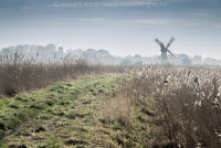 Footpath to Thurne Mill