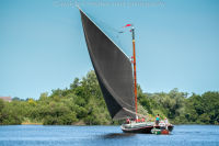 Black Sailed Norfolk Wherry