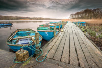 Boats moored on a jetty at Filby Broad