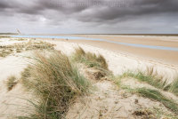 Marram Grass on Holkham Beach