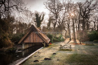 Fairhaven Water Gardens 7