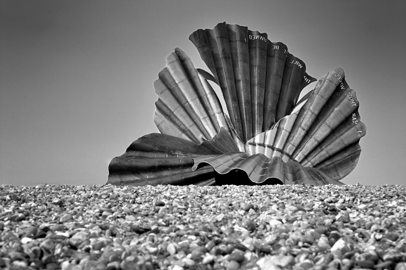 Aldebrough Clam Shell