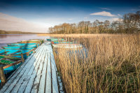 Winter at Filby Broad