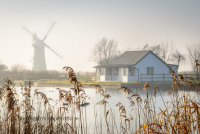St Benet's Mill through the reeds