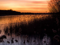 Sunset over Ormesby Little Broad