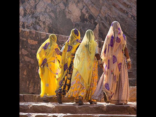 The Yellow Ladies of Rajastan