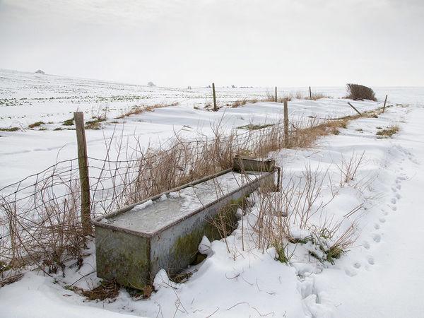 A Cold Bath