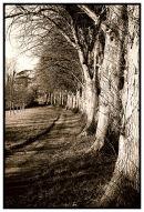 The Pathfields Plymton St Maurice Plymouth
