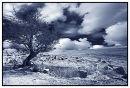 The high moor in Winter