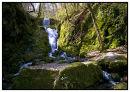 Canonteign Falls Dartmoor