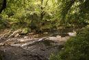 East Dart River Towards Hexworthy