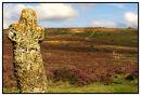 Bennett's Cross Dartmoor in late Summer