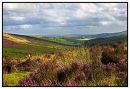 Dartmoor in Late Summer