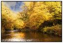Autumn on the Rirer Dart