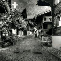 Swiss Village 2