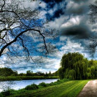 The River Trent 8