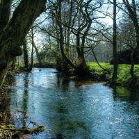 Dovedale 19
