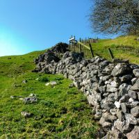 Dovedale 23