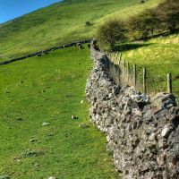 Dovedale 25