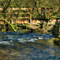 Dovedale 28