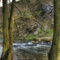 Dovedale 10