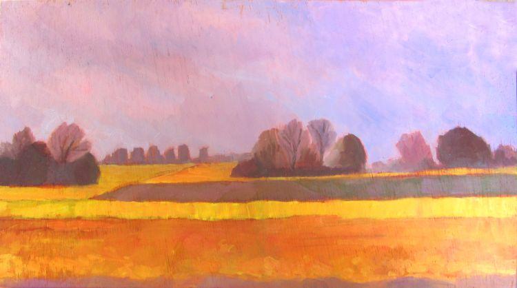 Hannath  Road  Daffodil  Fields (4)