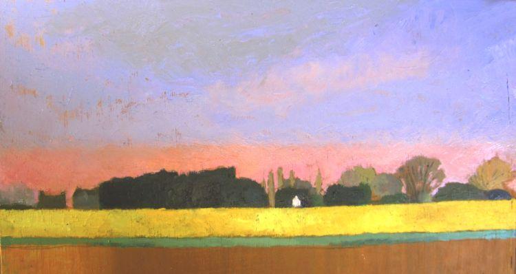 Hannath Road Daffodil Fields (5)