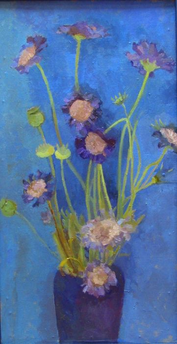 Blue Scabias
