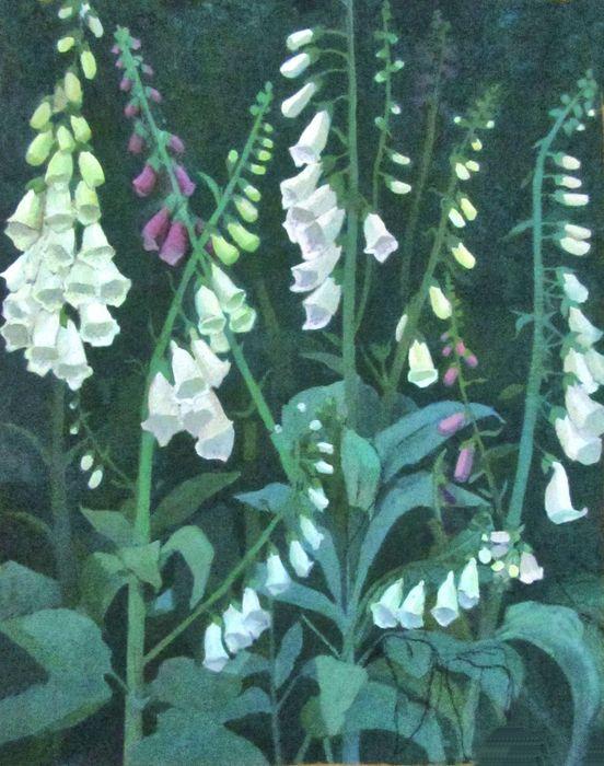 White Foxgloves SOLD