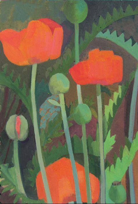 poppies29X20