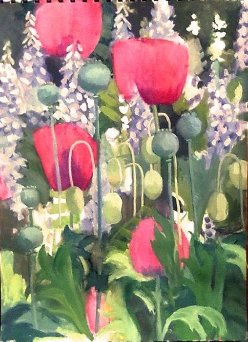 poppies  27x36