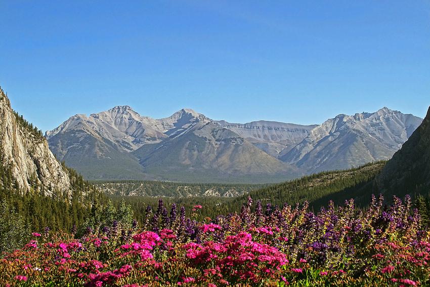 Mountain View, Banff, Canada