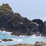 Cornwall coast IMG 2990 pe