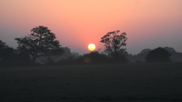 Sunrise at home - Essex