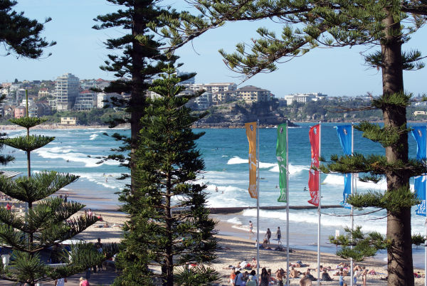 Manly Beaches