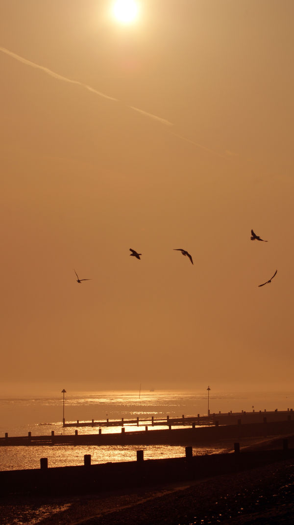 Southend on Sea sunset