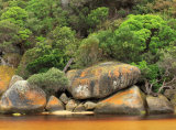 Wilsons Promontory National Park, Victoria